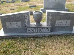 Mary E <i>Tucker</i> Anthony
