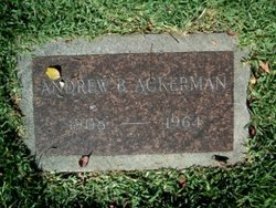 Andrew B Ackerman