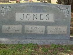 Ara <i>Sims</i> Jones