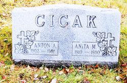 Anita <i>Surges</i> Cicak