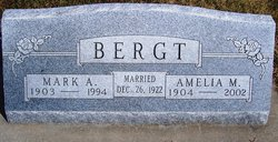 Mark A Bergt
