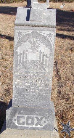 Aaron P Cox