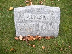 Anthony J. Alfieri