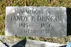 Tandy P. Duncan