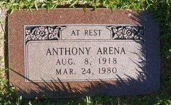 Anthony Arena