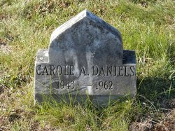 Carole A Daniels