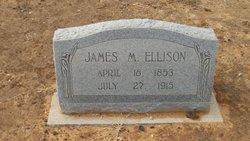 James Marion Ellison