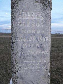 Ole E. Oleson
