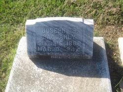 Joseph H Baggarly