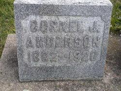 Cornel J Anderson