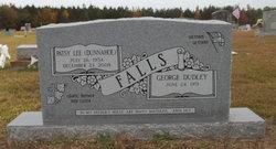 Patsy Lee <i>Dunnahoe</i> Falls