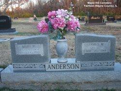 Mary Walden <i>Hedrick</i> Anderson
