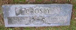 Anna Belle <i>Wheelock</i> Crosby