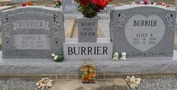 Alice Ann <i>Lockstedt</i> Burrier