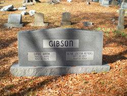 Olive Izeta <i>Peters</i> Gibson