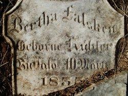Bertha <i>Kuebler</i> Falsken
