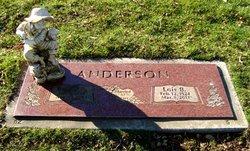 Lois Berneice <i>O'Dell</i> Anderson