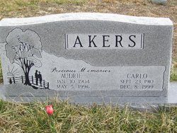 Audrie Akers
