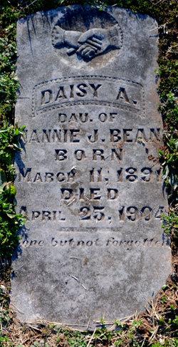 Daisy A. Bean