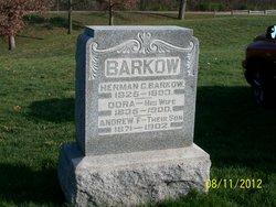 Andrew F. Barkow