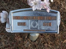 Carlos A Wilson