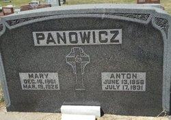Mary <i>Nadolinski</i> Panowicz