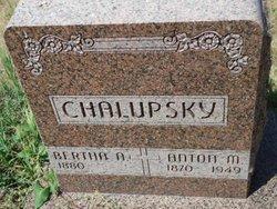 Bertha Anne <i>Kaminski</i> Chalupsky