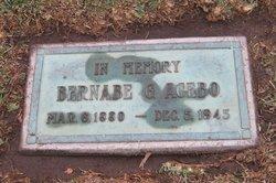 Bernabe G. Acebo