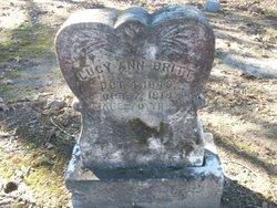 Lucy Ann <i>Chambers</i> Britt