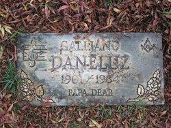 Galliano G. Daneluz