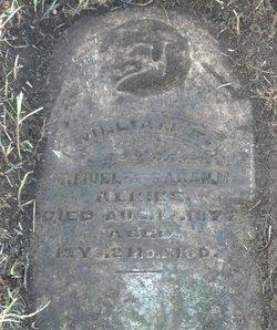 William F Alkire