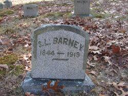 Sarah Larkin <i>Potter</i> Barney