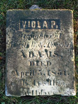 Viola P Adams