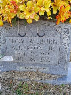 Tony Wilburn Alderson, Jr