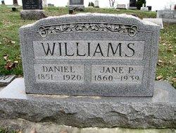 Jane P Williams