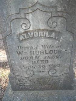 Alvorila <i>McGlamery</i> Horlock