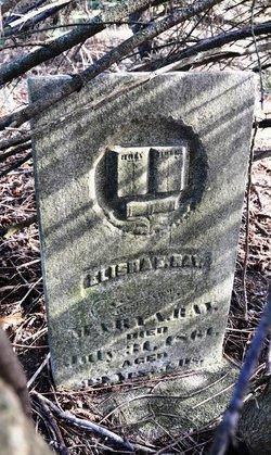Elisha E. Ray