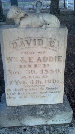 David G. Addie