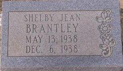 Shelby Jean Brantley