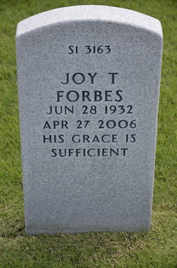 Joy Lee <i>Terry</i> Forbes