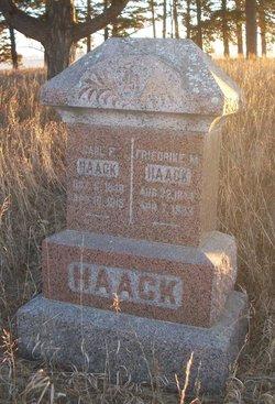 Friedrike M. Haack