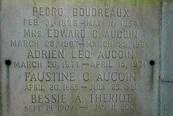 Adrian Leo Reb Aucoin