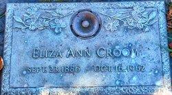 Eliza Ann <i>Greenhill</i> Croom