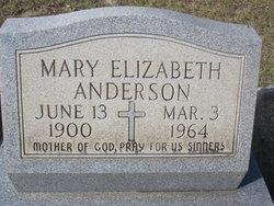 Mary Elizabeth Anderson