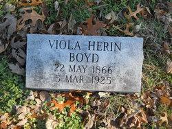 Viola <i>Herin</i> Boyd