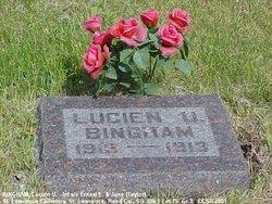 Lucien U Bingham