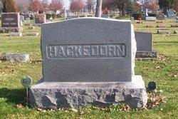 Dr David Elmer Hackedorn