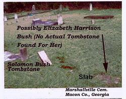 Elizabeth <i>Harrison</i> Bush