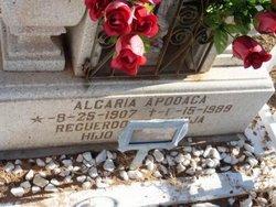 Alcaria Apodaca