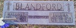 Eulema <i>Clark</i> Blandford